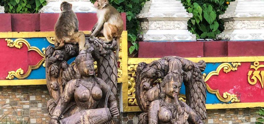Egyveleg: majom, indii táncosnővel és sztúpával