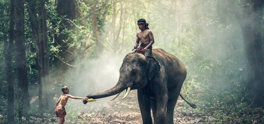 Indiai szokások és hagyományok