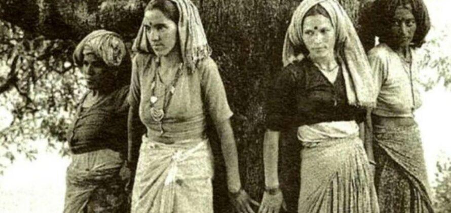 A Chipko mozgalom favédő asszonyai Indiában